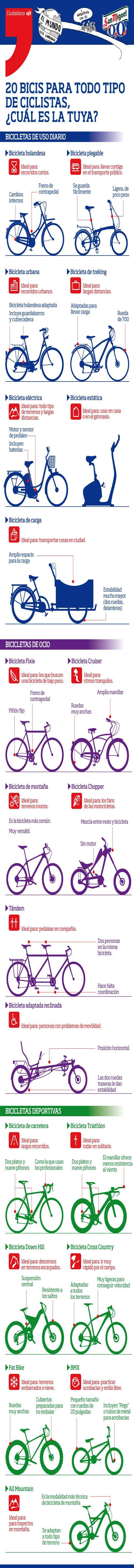 tipos-bicicletas-infografia